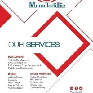 MamelodiBiz Flyer Design Services